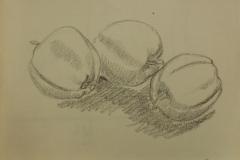 onbenoemd-1847